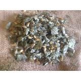 Herbe a reve ( Calea zacatechichi )