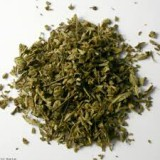 Plante a fumer Damiana
