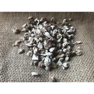 Acore calamus en poudre ( Vacha )