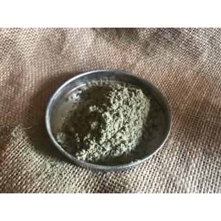 Bala ( Sida cordifolia )